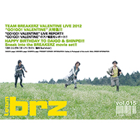 BREAKERZ | TEAM BRZ vol.015
