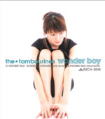 the★tambourines | wonder boy